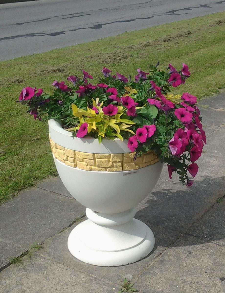 Apvali vaza gėlėms
